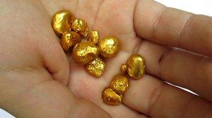 В Приморском крае ищут золото