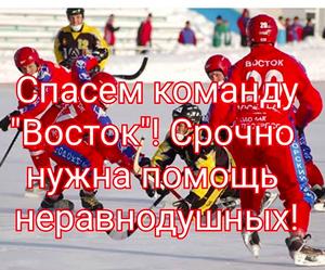 Для спасения приморского хоккея с мячем не хватает 174 тысячи рублей