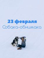 День обнимашек во Владивостоке