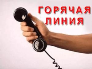 «Горячая линия» для родителей школьников организована в Приморье