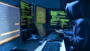 Киберугрозы украинских хакеров добрались до Приморья