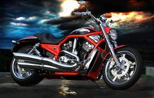 В Приморье откроется дилерский центр «Harley-Davidson»