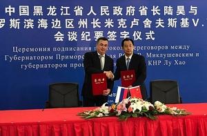 Китайцы построят во Владивостоке грандиозный экспо-центр