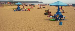 Шамора-песок или Шамара-трава: открыты новые факты о названии главной бухты Владивостока